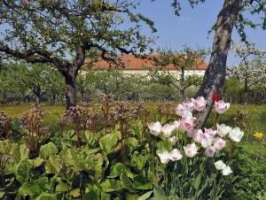 Schlossgarten Dachau Mit Weitwinkel aufgenommen.