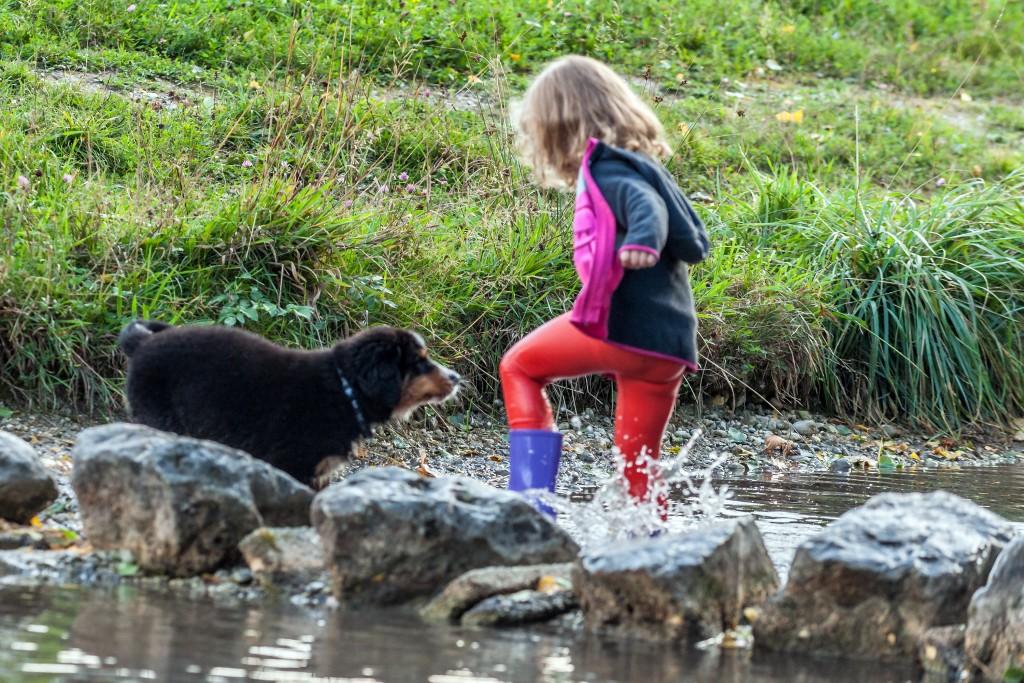 Hazel´s 1. Ausflug mit Lea zum Bach an unserer Siedlung