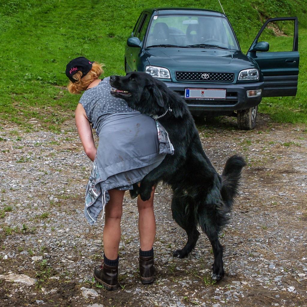 Lass mich auf deine Schulter