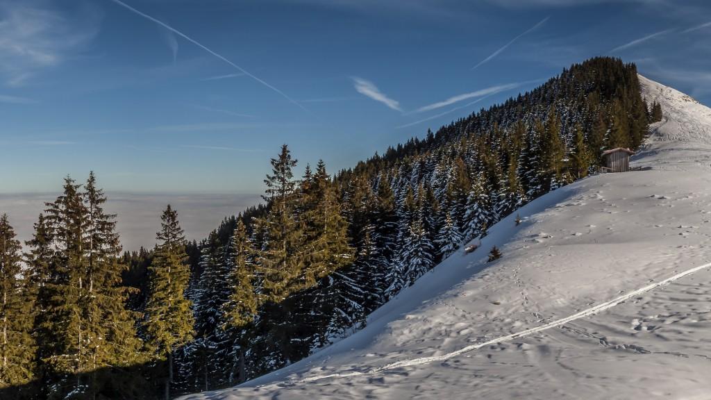 Hörnle-Panorama - Ausschnitt